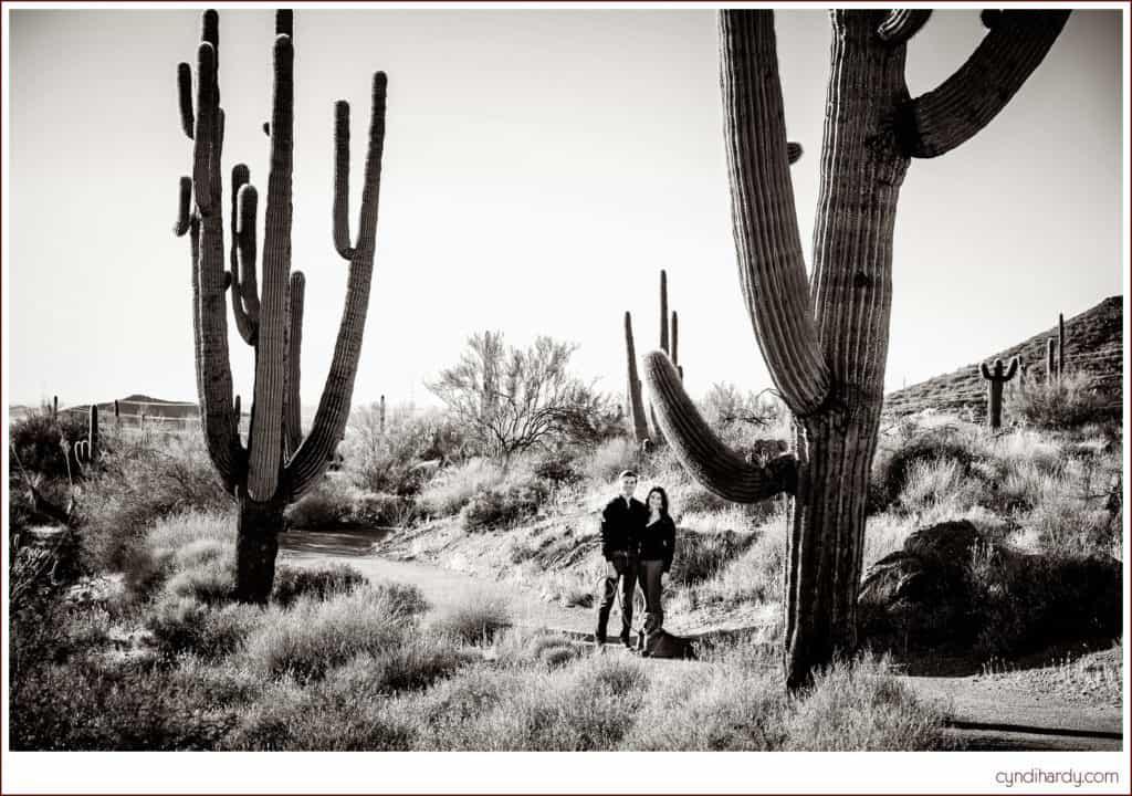 engagement, session. engaged. cyndi hardy photography, photography, photographer, photos, scottsdale, arizona, desert, cactus